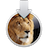 LionInstallerIcon.png
