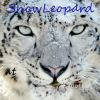 Hackintosch Basteln :) - letzter Beitrag von SnowLeopard