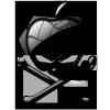 PowerHack G5 - letzter Beitrag von Hanseart
